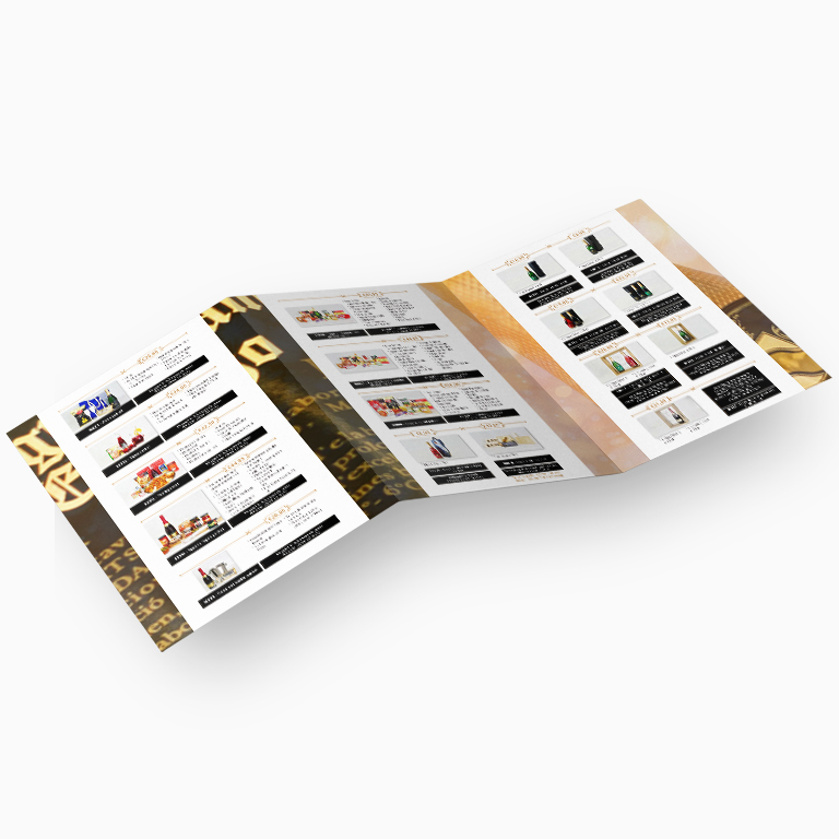 Trifold Promotional Flyer - LaCava